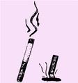 Lit cigarette extinguished vector image