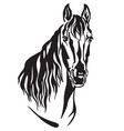 decorative portrait of horse 2 vector image vector image