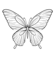 graphic black and white butterfly vector image vector image