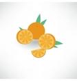 mandarin vector image