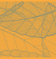 orange background with dotted distressed leaf vector image vector image