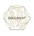 organic leaf design logo vector image