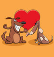valentine card with dog couple characters in love vector image vector image