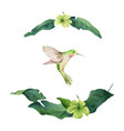 watercolor card tropical leaves vector image vector image