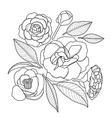 Graphic camellia set vector image vector image