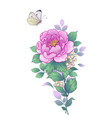 hand drawn peony flower and flying butterfly vector image