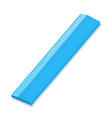 isolated of ruler vector image vector image
