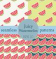 Juicy Watermelon seamless pattern set vector image vector image
