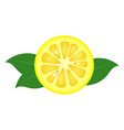 lemon fruit slice closeup icon round piece of vector image vector image
