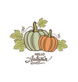 pumpkins with leaves image vector image
