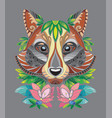 racoon coloring book anti-stress vector image vector image