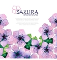 watercolor elegant background with japanese sakura vector image vector image