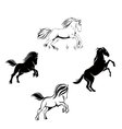 a set of horses vector image vector image