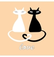 Black and white cats in love vector image vector image