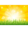 Bright sun effect with green grass field