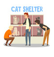 cat shelter people adopting cat pet from animal vector image