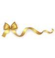 decorative gold bow with ribbon on a white vector image