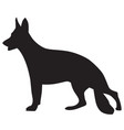 dog icon isolated vector image
