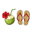 pair of flip flops and coconut drink summer vector image vector image