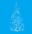 shiny quality group of bubbles rising from bottom vector image vector image