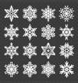 stock snowflakes set isolated vector image vector image