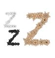 Vintage elegant floral capital letter Z vector image vector image
