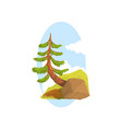 hand drawn landscape scene with evergreen pine vector image vector image