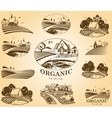 Organic farming design elements vector image