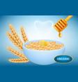 organic oatmeal realistic bowl porridge vector image