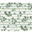 seamless pattern eucalyptus silver dollar tree vector image vector image