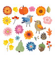 set of cute hand-drawn autumn fall elements vector image vector image
