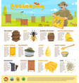 honey beekeeping infographics vector image