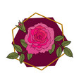 beautiful hand drawn red rose with leaves vector image
