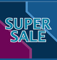 big sale web banner promotion campaign creative vector image vector image