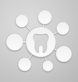 Circles of different sizes around the tooth vector image vector image