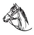 decorative portrait of horse 3 vector image vector image