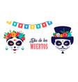 dia de los muertos day of the dead mexican vector image vector image