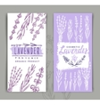 lavender background vector image vector image
