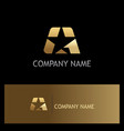 star gold logo vector image vector image