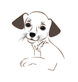 Cartoon cute outline dog vector image