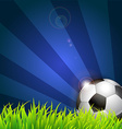 Soccer ball on grass background vector image
