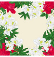seamless border branches white and red vector image