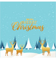 wish you a merry christmas reindeer pine snow blue vector image
