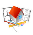 house and project vector image