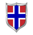 Norway flag button vector image
