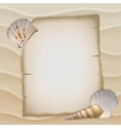 Shells and blank paper sheet vector image