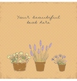 Vintage greeting card with the pot plants collecti vector image