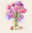 watercolor bouquet lilac aster vector image