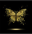 decorative golden butterfly vector image vector image