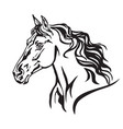 decorative portrait of horse 8 vector image vector image